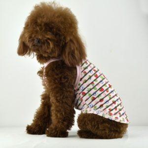 Transparent stripe pattern dog tank