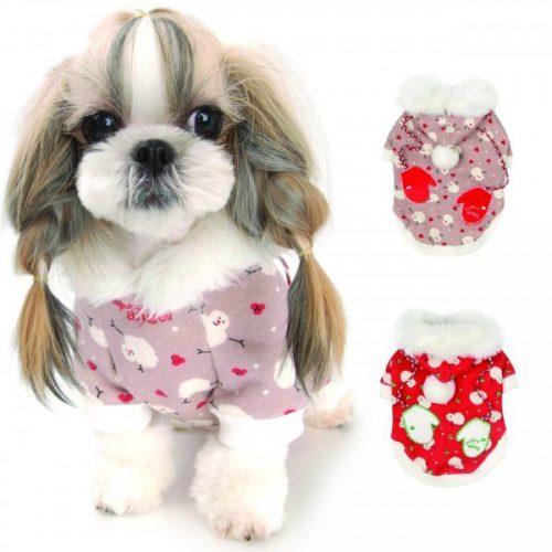 Puppy Angel Wonderland