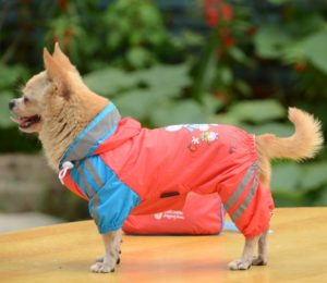 Double-layer mesh Puppy four-legged Printing water-proof dog raincoat Deeppink