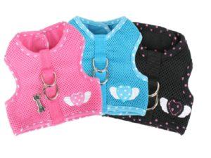 Pinkaholic Genuine Harness and Leash
