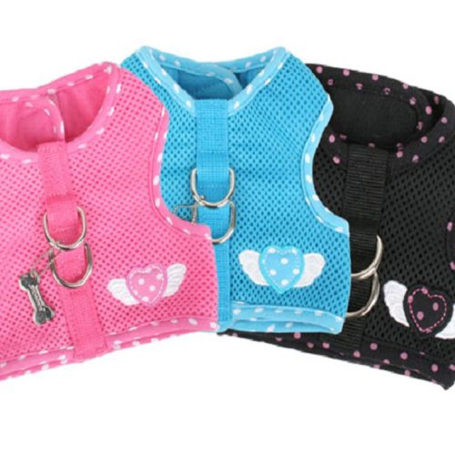Pinkaholic Genuine Harness and Leash