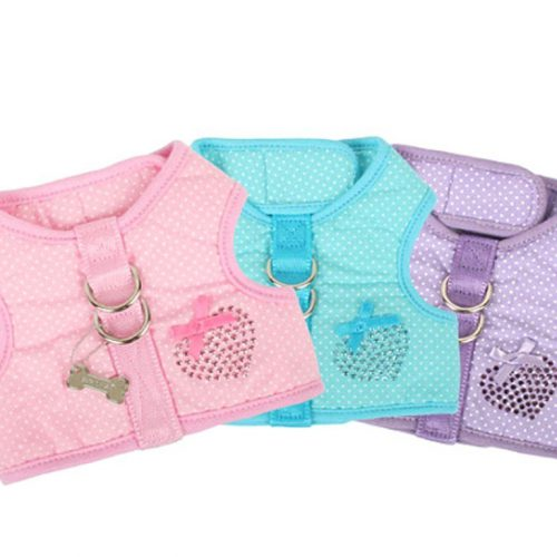 Pinkaholic Polka Harness and Leash