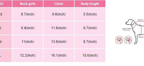 Pinkaholic Mod flirt Harness